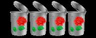 4 Trashy Roses