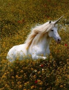 Elusive-Unicorn-Caught-on-Camera