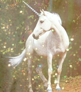 unicornbyastateofconfusiond62hzqb