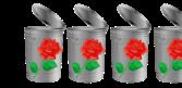 3.5 Trashy Roses