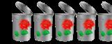 4.5 Trashy Roses